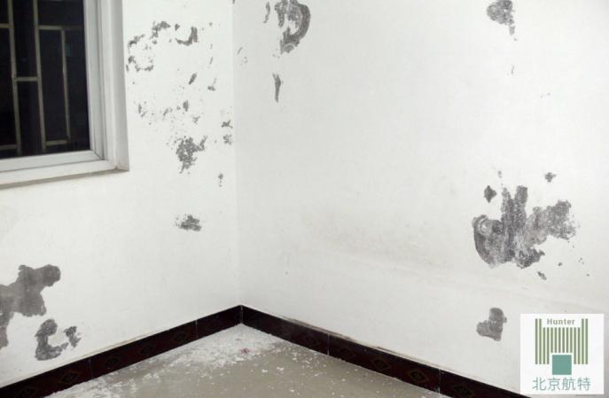墙面掉粉怎么办,新方法,让你获得更耐用的墙面!