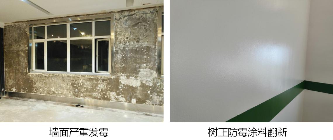 家装勿扰!墙面发霉怎么办?墙面如何有效防霉?