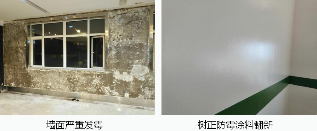 发霉的墙壁怎么处理?如何有效防霉?