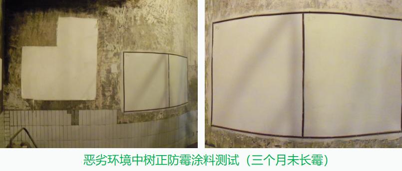 防霉墙面漆,让墙面环境摆脱发霉起鼓,更耐用!