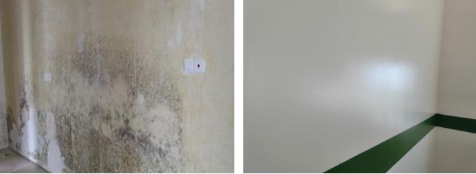 墙面防霉处理方法有哪些?哪种比较有效?