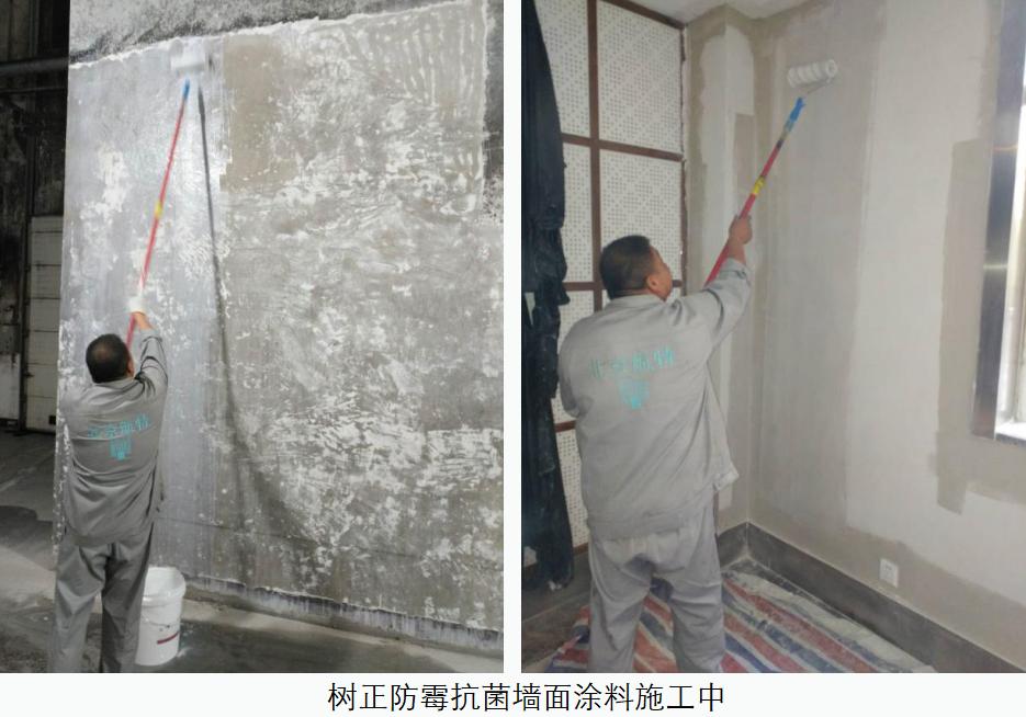 墙面刷防水涂料防霉,哪家质量比较好值得我们的选择?