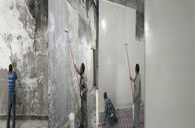 你知道防霉墙面涂料环保吗?